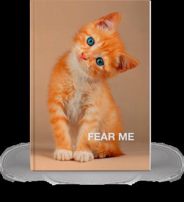Märkmik Fear Me